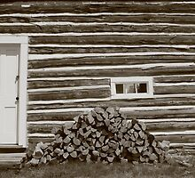 What's Out Back series 5 Woodpile by Rachel Sonnenschein
