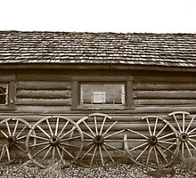What's Out Back series 6 Wagon Wheels by Rachel Sonnenschein