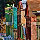 Downtown Nevada City by pat gamwell