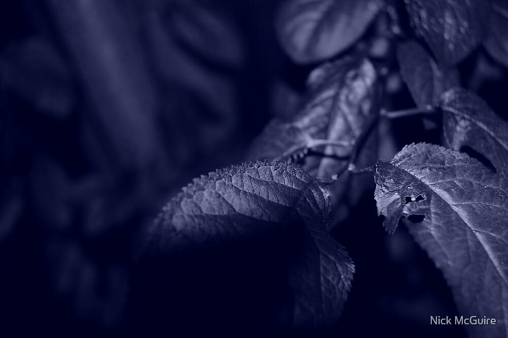 Calming Leaf by Nick McGuire