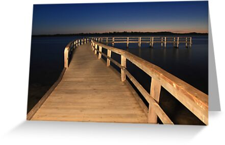 Lake Clifton Boardwalk At Dusk  by EOS20