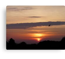 Flying Home To Roost Canvas Print