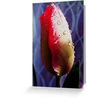 Tulip With Raindrops Greeting Card