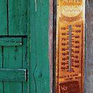 Temperature by Bob Hortman