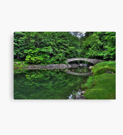 Filmore Glen State Park V HDR Canvas Print