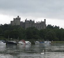 Arundel Castle from the River Arun by Caroline Anderson