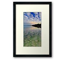 Lake Clifton Thrombolites Under Moonlight  Framed Print