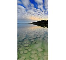 Lake Clifton Thrombolites Under Moonlight  Photographic Print