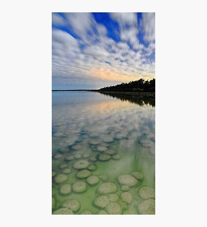 Lake Clifton Thrombolites Under Moonlight  Photographic Print