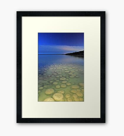Lake Clifton Thrombolites Under Moonlight  Framed Print