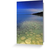 Lake Clifton Thrombolites Under Moonlight  Greeting Card