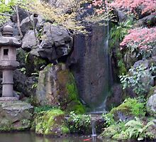 Japanese Garden by phil decocco