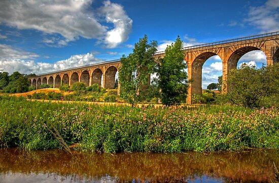 The Avon Viaduct by Tom Gomez