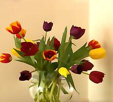 rainbow tulips by OlaG