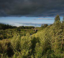 prairie views by Heath Dreger