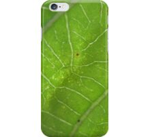 leafy greens iPhone Case/Skin