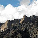 Mountain Peaks by Jan  Tribe