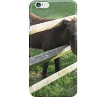 Young Donkey iPhone Case/Skin