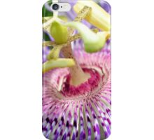 Beauty Of The Passion iPhone Case/Skin