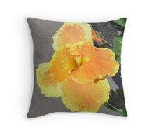 Beautiful Orange n Yellow Flower Throw Pillow