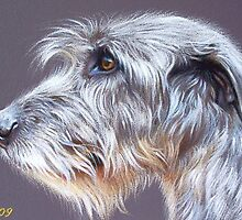 Irish Wolfhound #2 by Elena Kolotusha