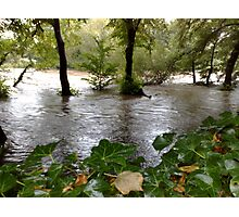 Taff Flood Photographic Print
