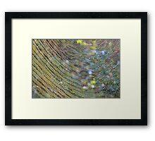 Golden Web Framed Print