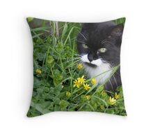Alfie in the undergrowth Throw Pillow