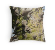 Spike Throw Pillow