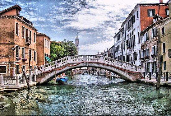 Under The Bridges Of Venice by naturelover