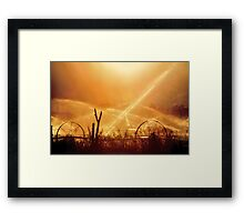 Watering Day on the Farm Framed Print