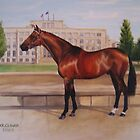 Blind Justice, stallion by Jean Farquhar