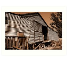 The Shearing Shed Art Print
