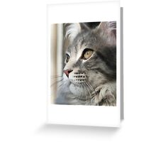 Maine Coon or Lion? Greeting Card