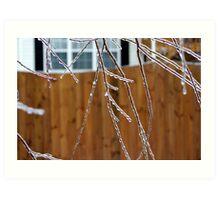 ice trees Art Print