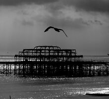 West Pier Brighton 2 by Tony Hadfield