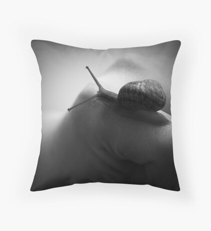 Approaching the summit Throw Pillow