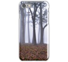 Fog At Dawn iPhone Case/Skin