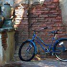 Bike by Margaret  Shark