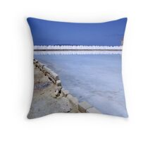 There's Salt In them There Hills Throw Pillow