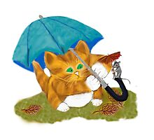Umbrellas for Mouse and Kitty Photographic Print