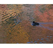 Water reflections II Photographic Print