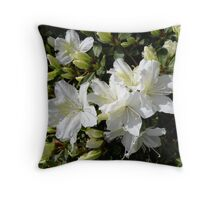 'Delaware Valley White' Throw Pillow