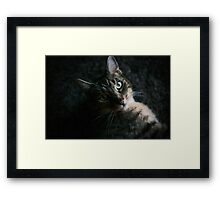 Hello Kitty! Framed Print