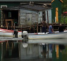 A Reflection on Harbour Life by Brian Carey