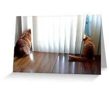 Keeping A Distance Greeting Card
