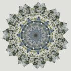 peaceful white flower mandala : alyssum and jewel cacti by venusfire