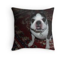 """Seriously, does my face look funny to you""? Throw Pillow"