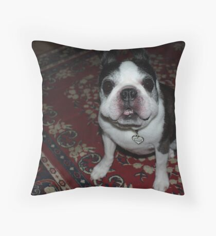 """""""Seriously, does my face look funny to you""""? Throw Pillow"""