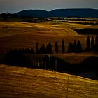 Tuscan Landscapes by Mary Ann Reilly